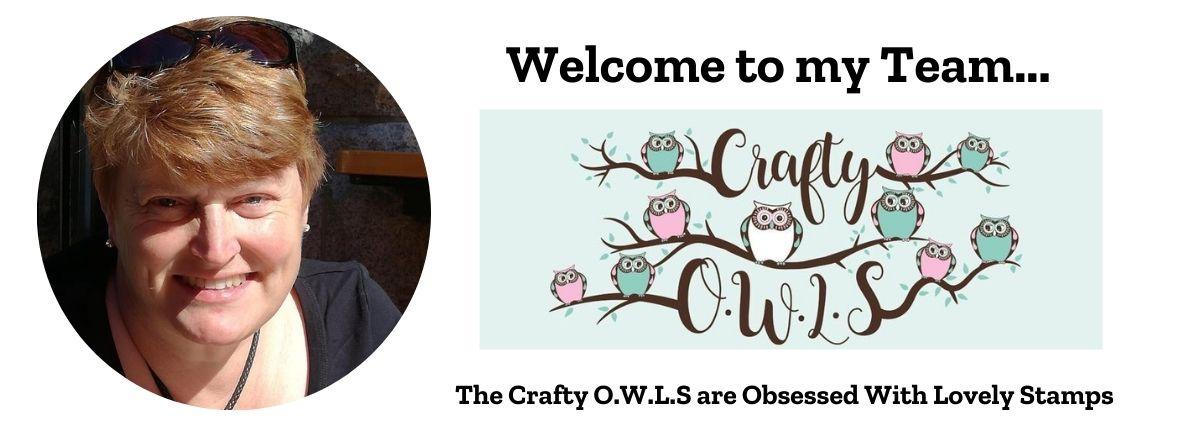 Team Crafty O.W.L.S. Banner